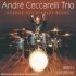 "André Cecarelli Trio - ""Avenue des Diables Blues"""